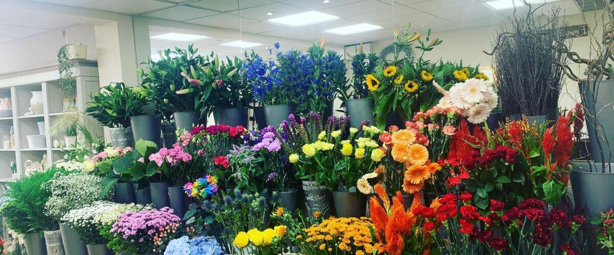 Arrangement of flowers in store